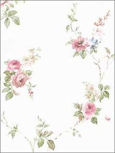 Ophelia & Co. Larosa L x W Floral and Botanical Wallpaper Roll Color: Cream/Pink Modern Floral Wallpaper, Vintage Floral Wallpapers, Botanical Wallpaper, Textured Wallpaper, Botanical Prints, Flower Wallpaper, Wallpaper Online, Print Wallpaper, Wallpaper Roll