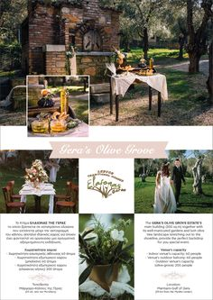 """What could be more priceless than a wedding taking place in a truly stunning and inspiring landscape surrounded and inhabited by """"ancient"""" Olive trees. Outdoor Balcony, Outdoor Venues, Olive Tree, Special Events, Lush, Natural Beauty, Greece, Backdrops, Island"""