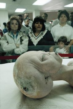 Replica of an alien body (a movie prop donated to the museum) in the International UFO Museum and Research Center. Look at those serious visitors! Les Aliens, Aliens And Ufos, Ancient Aliens, Alien Pictures, Alien Photos, Arte Alien, Alien Art, Pseudo Science, Science And Nature