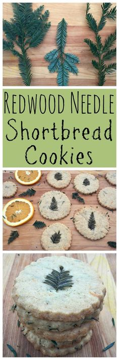 Make these festive foraged redwood needle shortbread cookies for the holidays! You can use any edible conifer needle in this recipe.