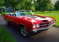 1970 Chevelle SS 454 Convertible Maintenance/restoration of old/vintage vehicles: the material for new cogs/casters/gears/pads could be cast polyamide which I (Cast polyamide) can produce. My contact: tatjana.alic@windowslive.com
