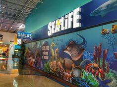 Wolf lodge on pinterest great wolf lodge idaho and Concord mills mall aquarium