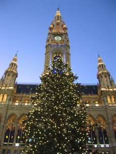 Vienna, Austria - Christmas Market. Have to get there someday and drink some hot wine:)