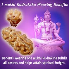 1 mukhi Rudraksha Wearing Benefits  Wearing one Mukhi Rudraksha fulfills all desires and helps attain spiritual insight. It is good for relieving brain and nerve related disorders with several healing benefits for mind, body and emotions.