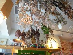 森林食堂 (京都二条横にあるカレー屋さん)