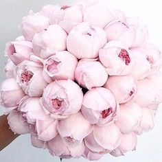 I could genuinely bite this perfect wedding bouquet. I'm not having a bouquet when I get married but I would definitely choose peonies if I was!