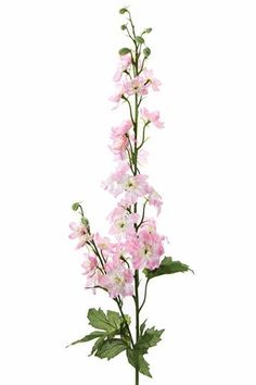 Create a pretty pastel DIY wedding arrangement with light pink artificial wedding flowers like this pink faux delphinium larkspur spray. These pastel pink wildflower delphiniums will make a tall, elegant centerpiece in your home! Long Flowers, Flowers Today, Faux Flowers, Silk Flowers, Delphinium Tattoo, Delphinium Flowers, Delphiniums, Diy Wedding Flowers, Garden Wedding
