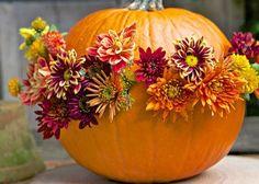 Fresh New :  Fall Inspiration Ideas!