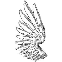 Free Tattoo Designs Wings Dennis Smith ❤ liked on Polyvore