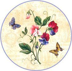 butterflies round EV