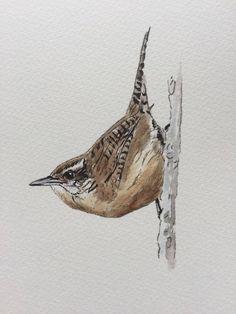 Dessin aquarellé de l'artiste Nathalie Charlier-Coutant Moose Art, Bird, Animals, Watercolor Drawing, Artist, Animales, Animaux, Animais, Birds