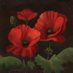 Vibrant Red Poppies I Art by Gloria Eriksen at AllPosters