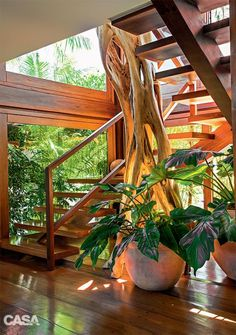 15 Beautiful Indoor Plants In Under The Stairs decor 3 weeks ago Terrace and Garden 0 Views The empty house below the stairs might be another house for varied functions. If yesterday we've lined plenty of house below the steps because the kitchen, Tropical House Design, Tropical Houses, Home Interior Design, Interior And Exterior, Exterior Paint, Exterior Design, Rustic Stairs, Patio Pergola, Under Stairs