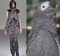 Image result for images of nature in fashion