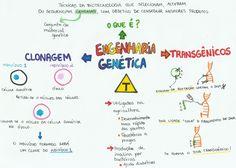 engenharia genetica