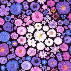 Bloominescent purple flowers Poplin fabric Robert Kaufman
