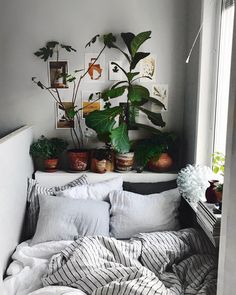 Home Bohemian Bedroom Decor from Around the World urban outfitters bedroom + indoor plant + succulent ideas for the bedroom Bohemian Bedroom Decor, Decor Room, Bedroom Inspo, Home Bedroom, Design Bedroom, Hippy Bedroom, Bedroom Beach, Bedroom Inspiration Cozy, Boho Dorm Room