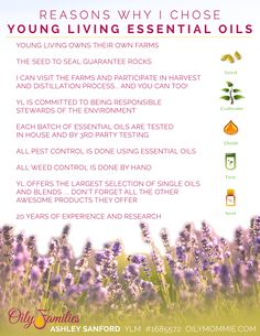 Why I Chose Young Living Essential Oils | OilyMommie.com Ashley Sanford YLM #1685572