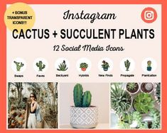 Cacti-and-Succulents-Icons Instagram Grid, Free Instagram, Instagram Tips, Instagram Story Template, Instagram Story Ideas, Social Media Icons, Social Media Graphics, Cacti And Succulents, Planting Succulents