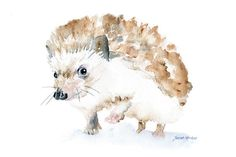 Watercolor hedgehog is a giclée reproduction of my original watercolor painting. Measures 4x6. (landscape/horizontal orientation)    Printed on fine