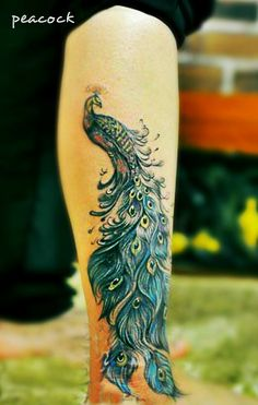a gorgeous peacock tattoo on the leg with beautiful feather