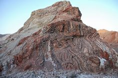 Oman: Warah Formation exposed on the Batain Coast of NE Oman. This is the thrust front of a thin-skinned fold & thrust belt | Geology IN