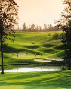 Golf course rankings