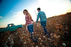 love the cotton field with the truck