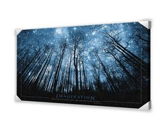 Imagination Stars Graphic Art on Wrapped Canvas
