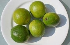 Grow a Lime Tree Indoors