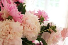 Peonies - the most gorgeous flowers ever...