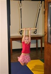 Home Therapy System Trapeze Bar - Autism Swings - Strength & Resistance Training
