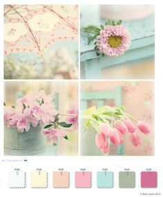 Shabby Chic Color Palette on Pinterest | Shabby chic, Shabby Chic ...