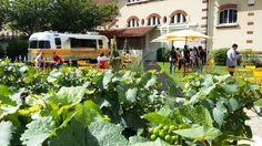 'Food Truck' de champanhe nos jardins da Veuve: grande pedida mesmo para quem não fizer a visita guiada