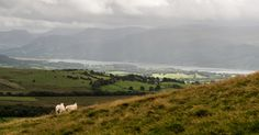 Binsey - looking towards Bassenthwaite Lake. | by alh1