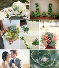 Image result for wedding succulents