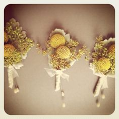 Yellow Billy Balls, Seeded Eucalyptus, and Dusty Miller Boutonnière