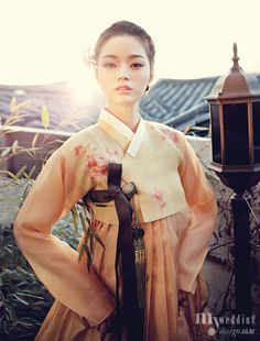 Lovely Lady in her Korean #Hanbok dress