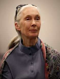 Jane Goodall by HourHeroYes.deviantart.com on @deviantART