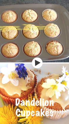 These easy dandelion cupcakes with sunflower seeds are so simple to make. Decorated with a swirl of delicious lemon frosting they make a beautiful decoration to your dining table. Herb Recipes, Whole Food Recipes, Dessert Recipes, Cooking Recipes, Dinner Recipes, Desserts, Dandelion Recipes, Lemon Frosting, Recipes
