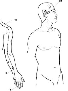 The 138 Best Acupressure Images On Pinterest Health And Wellness