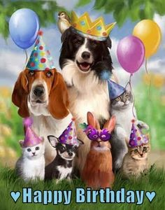 Party Animals by Thomas Wood~ready for the birthday cake Happy Birthday Animals, Happy Birthday Dog, Happy Birthday Pictures, Happy Birthday Messages, Happy Birthday Quotes, Happy Birthday Greetings, Animal Birthday, Birthday Photos, Birthday Fun