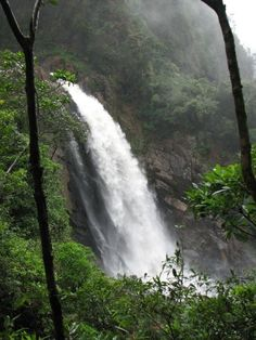 Cachoeira da Usina - SP