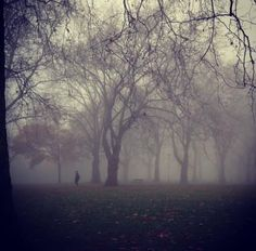 Highbury Fields - London