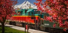 From the Mount Hood Railroad to the Eagle Cap Excursion Train, these 6 railroads offer amazing scenic and holiday train rides that will blow you away.