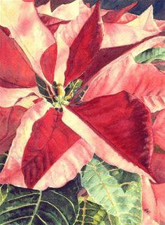 """""""Poinsettia"""" - Original Fine Art for Sale - © Ann Nemcosky"""
