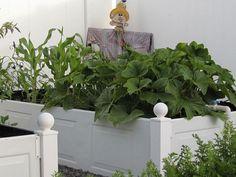 Garage door raised garden beds www.lifeatthecottage.com
