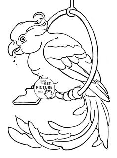 pet parrot coloring page for kids animal coloring pages printables free wuppsycom - Super Cute Animal Coloring Pages