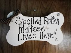Maltese Dog sign Spoiled Rotten pet by kpdreams on Etsy, $10.00
