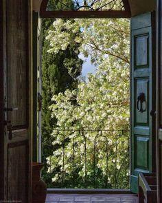 Italian Summer, European Summer, French Summer, Morning Inspiration, Style Inspiration, Window View, Window Art, Window Boxes, Through The Window